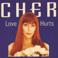 Cover Cher - Love Hurts [1991]